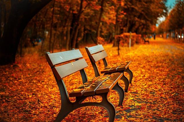 Was Sie in Herbst und Winter nicht tun solltenWas Sie in Herbst und Winter nicht tun sollten
