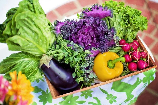 Mit gesunder Ernährung Krankheiten vorbeugen