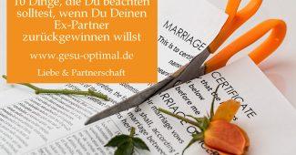 Trennung – Wie den Ex-Partner zurückgewinnen