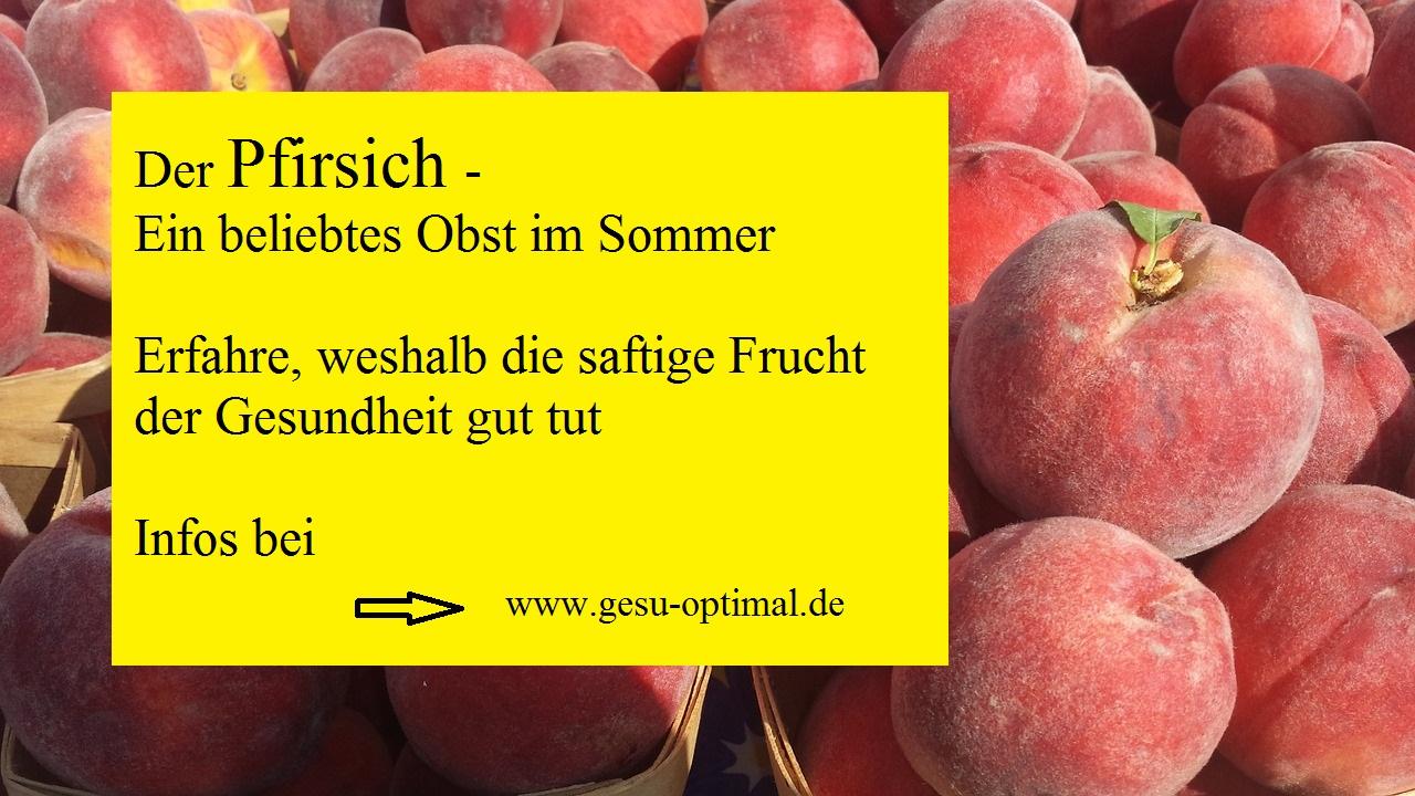 Der Pfirsich- Ein König feiert Hochsaison