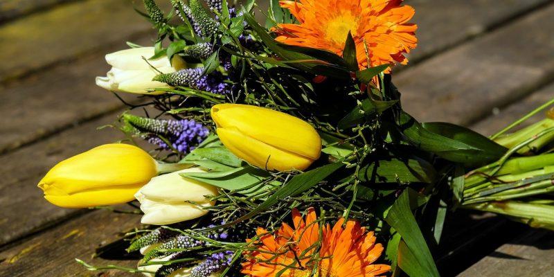 Blumen Schenken | Gesu-optimal | Gesu-optimal Blumen Schenken Tipps