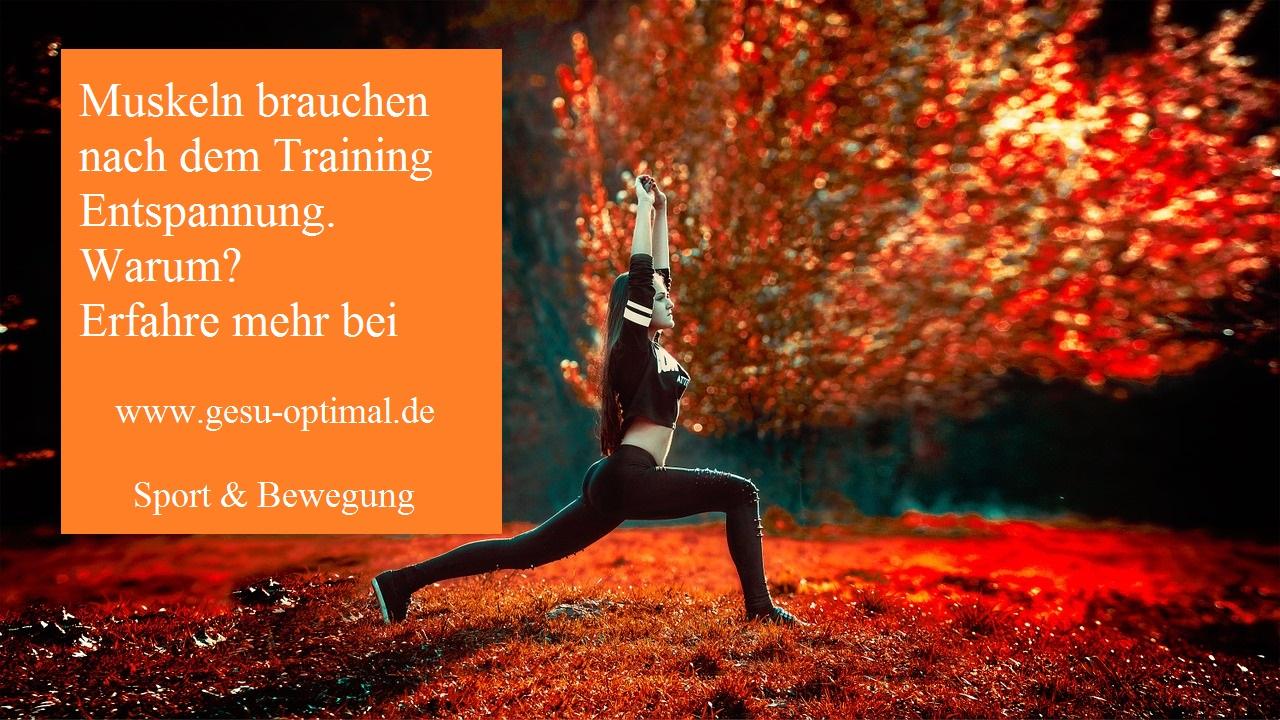 Warum Muskeln nach dem Training Entspannung brauchen