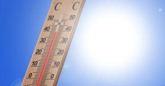 Wenn Sommerhitze zum Notfall wird
