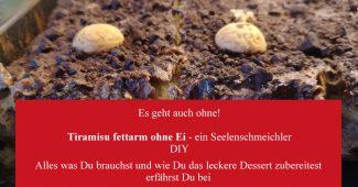 Tiramisu fettarm ohne Ei – ein Seelenschmeichler